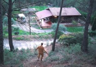 Wild Forest, una reserva que lucha a favor de los animales salvajes