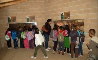 La educación, clave para SEO/Birdlife en la conservación del medio ambiente