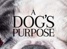 Denuncian el estreno de A Dog's Purpose por maltratar animales