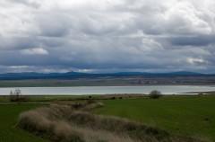 Día Mundial de los Humedales: Doñana, el Delta del Ebro y la Alburfera de Valencia, enclaves más amenazados