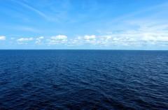 Hoy, 8 de junio, es el Día Mundial de los Océanos