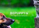BEPUPPY, una red social para mascotas