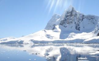 El 79% de la biodiversidad antártica podría desaparecer