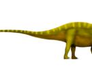 Descubiertos restos de dinosaurios con espinas gigantes