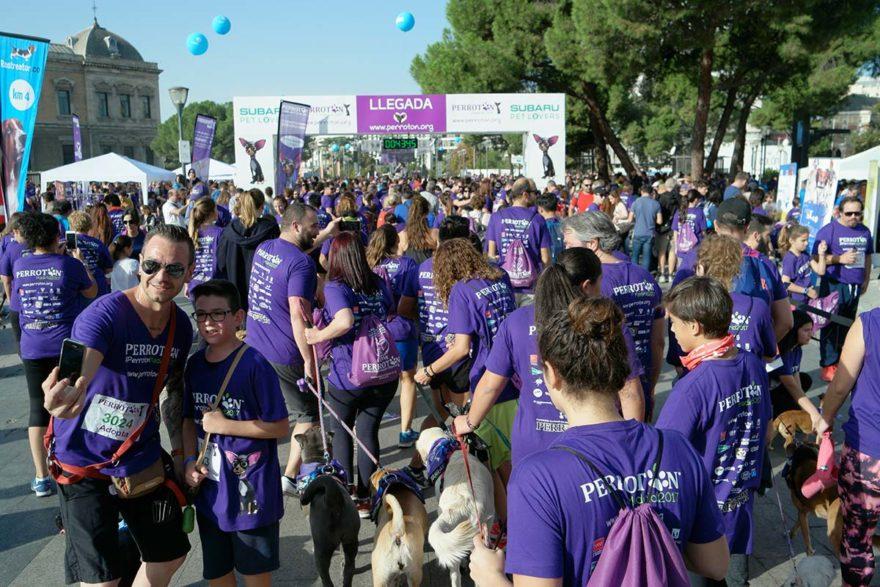 Perroton Madrid 2