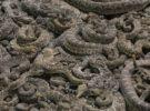 Serpientes: qué diferencias hay entre boas y pitones