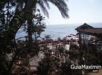 algas beach