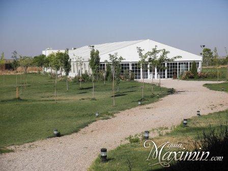 jardin-carpa