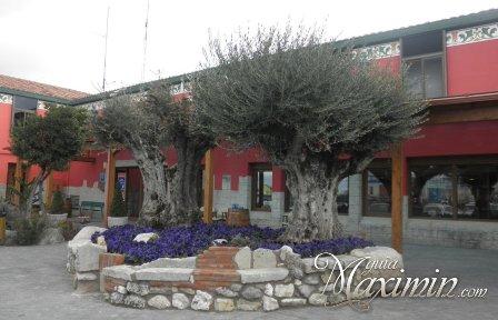 EL ALFOZ DE BURGOS (VILLAGONZALO PEDERNALES-BURGOS)