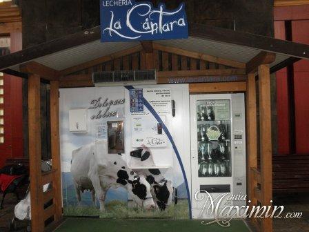 LECHERIA LA CANTARA – GANADERIA PURISION (AZOÑOS-CANTABRIA)