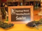 esparrago-brocoli