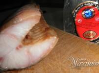 anguila para degustar
