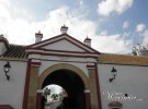 Hacienda Atalaya Alta (Carmona-SE)