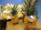Fruit Attraction 2012 – Nuestra selección (Madrid)