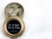 El origen de la vida... en una lata, Aponiente