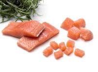Cortes Salmon 2