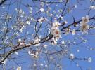 … Y pensábamos que había llegado la primavera