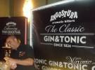 Gin Show Madrid 2013