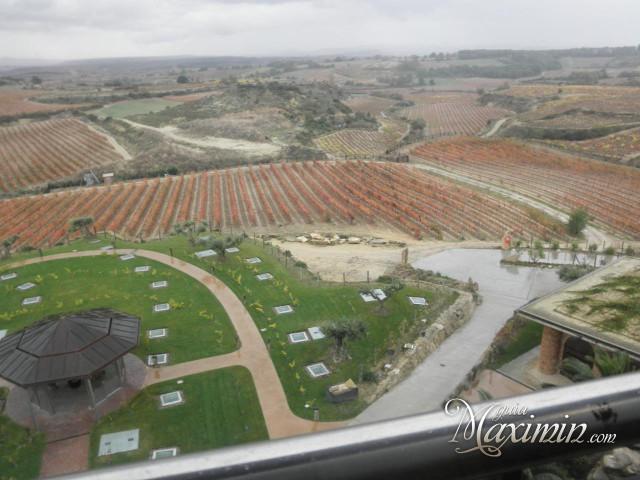vi±edos y terrazas Eguren Ugarte