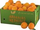 Naranjas Herminia – Hoy en el árbol y mañana en tu mesa