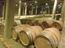 Bodegas C.V.N.E. – Viña Real (Laguardia – AL)