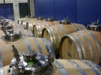 barricas vinos especiales
