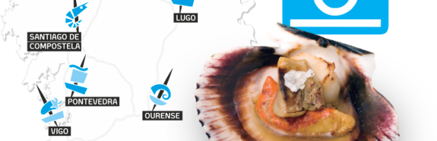 De tapas por Galicia