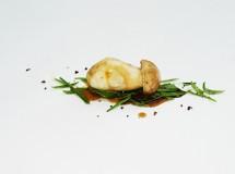 Las setas – Manjar del bosque