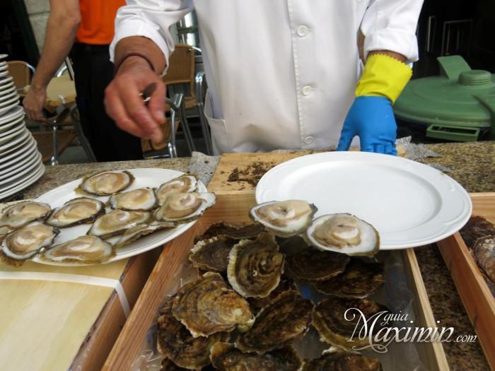 abridor de ostras