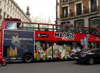 Buses Aceites Oliva 2015 (4)