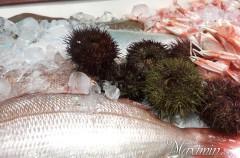 Menú degustación Hogar del Pescador (Villajoyosa-A)
