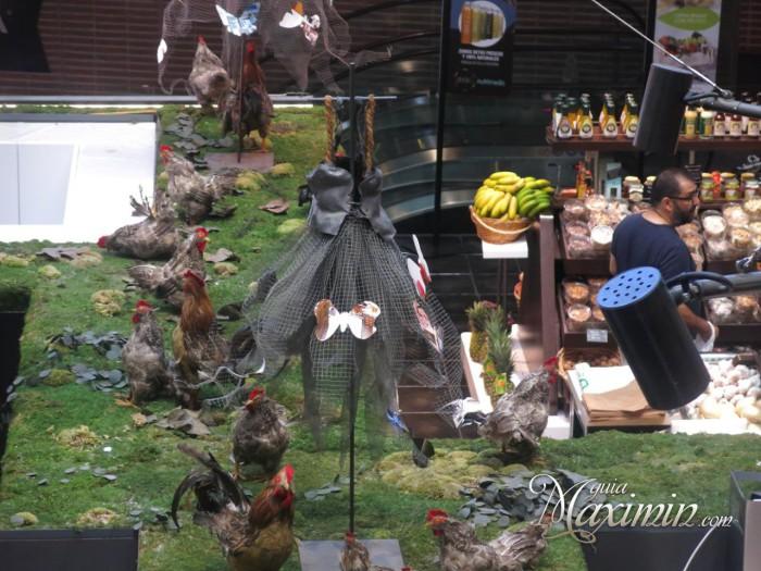 las gallinas en el campo