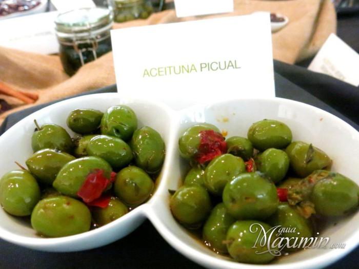 aceituna-picual-1024x768