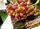 Fruit Attraction15 Guiamaximin09
