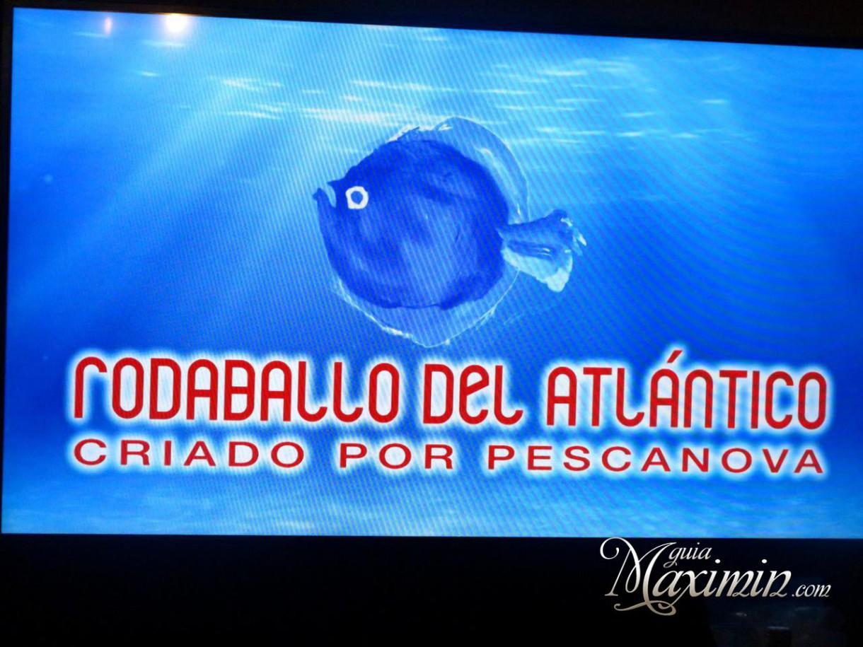 Rodaballo del Atlántico Pescanova y Ricardo Sanz