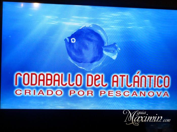 Rodaballo Pescanova Guiamaximin07