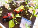 Fruit Attraction 2016 : Explosión otoñal
