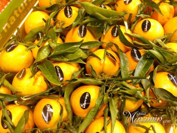 Fruit_Attraction_2016_Guiamaximin14