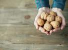 El placer de utilizar nueces de primera calidad en la cocina