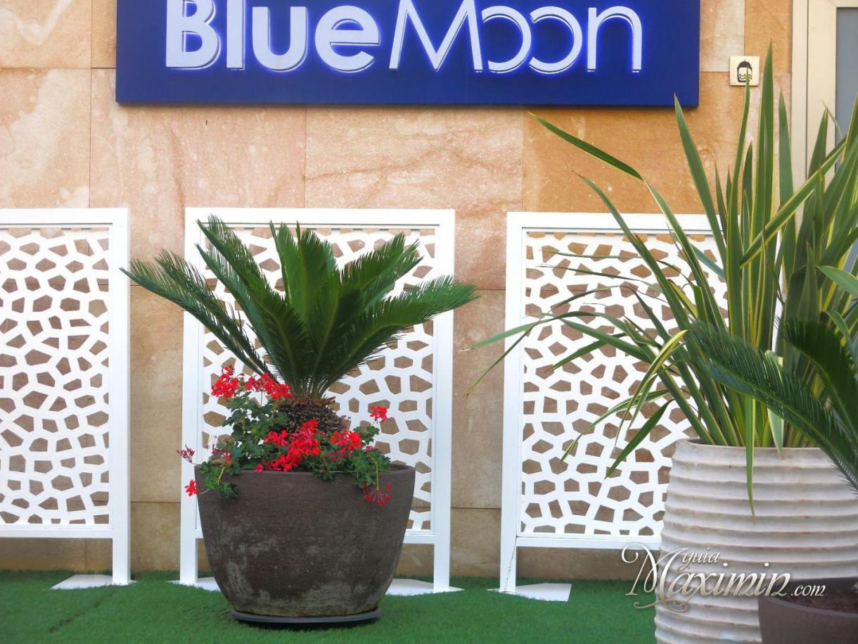 Blue Moon la terraza para disfrutar de la noche madrileña