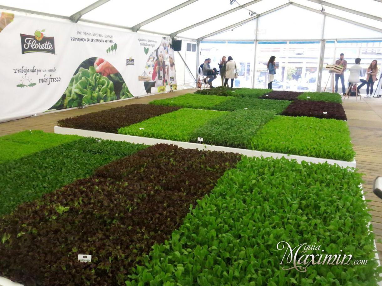 Del huerto de Florette a los mercados de Madrid