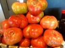 Saboreando el auténtico tomate en Floren Domezain (Madrid)