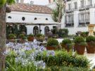 Menú «Raíces Compartidas» en Palacio de los Duques (Madrid)
