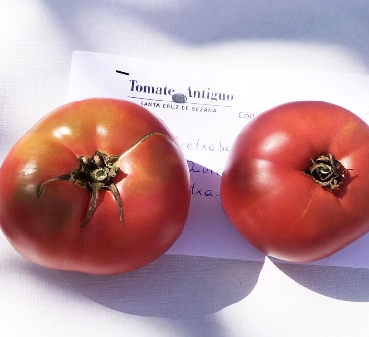Tomate De Aretxabaleta, Mejor Tomate De España En El Concurso De La Iii Feria Nacional Del Tomate Antiguo De Bezana
