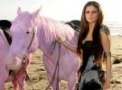 Pink critica a Selena Gómez por su último videoclip