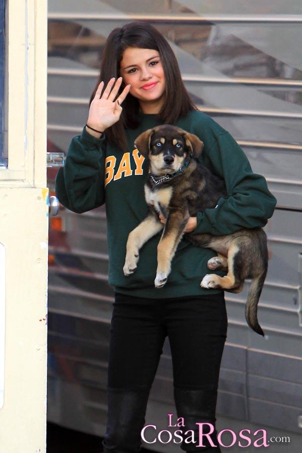 Selena Gomez y Justin Bieber adoptan un perro