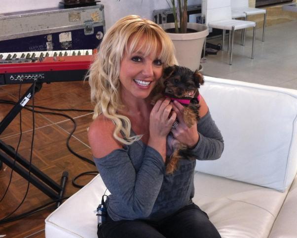 Britney Spears, primera cita con Harry Morton