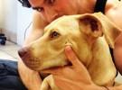 Ian Somerhalder adopta a una perra rescatada junto al set de The Vampire Diaries