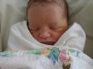 Milla Jovovich se convierte en madre por segunda vez
