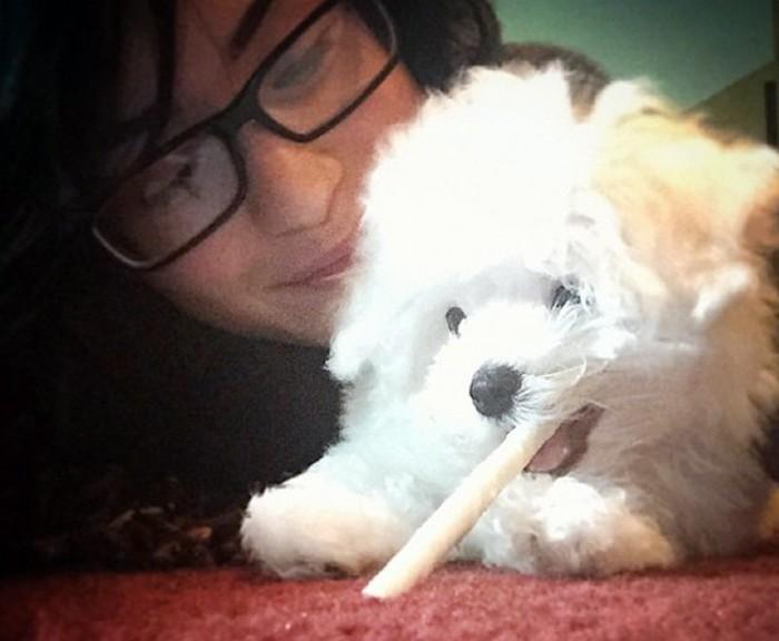 Demi Lovato destrozada por la muerte de su perro Buddy